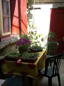 137/courtyard1.jpg