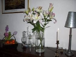 137/lilies.jpg