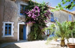 62/Holiday_rentals_in_France_Bougainvillaea_outside.jpg